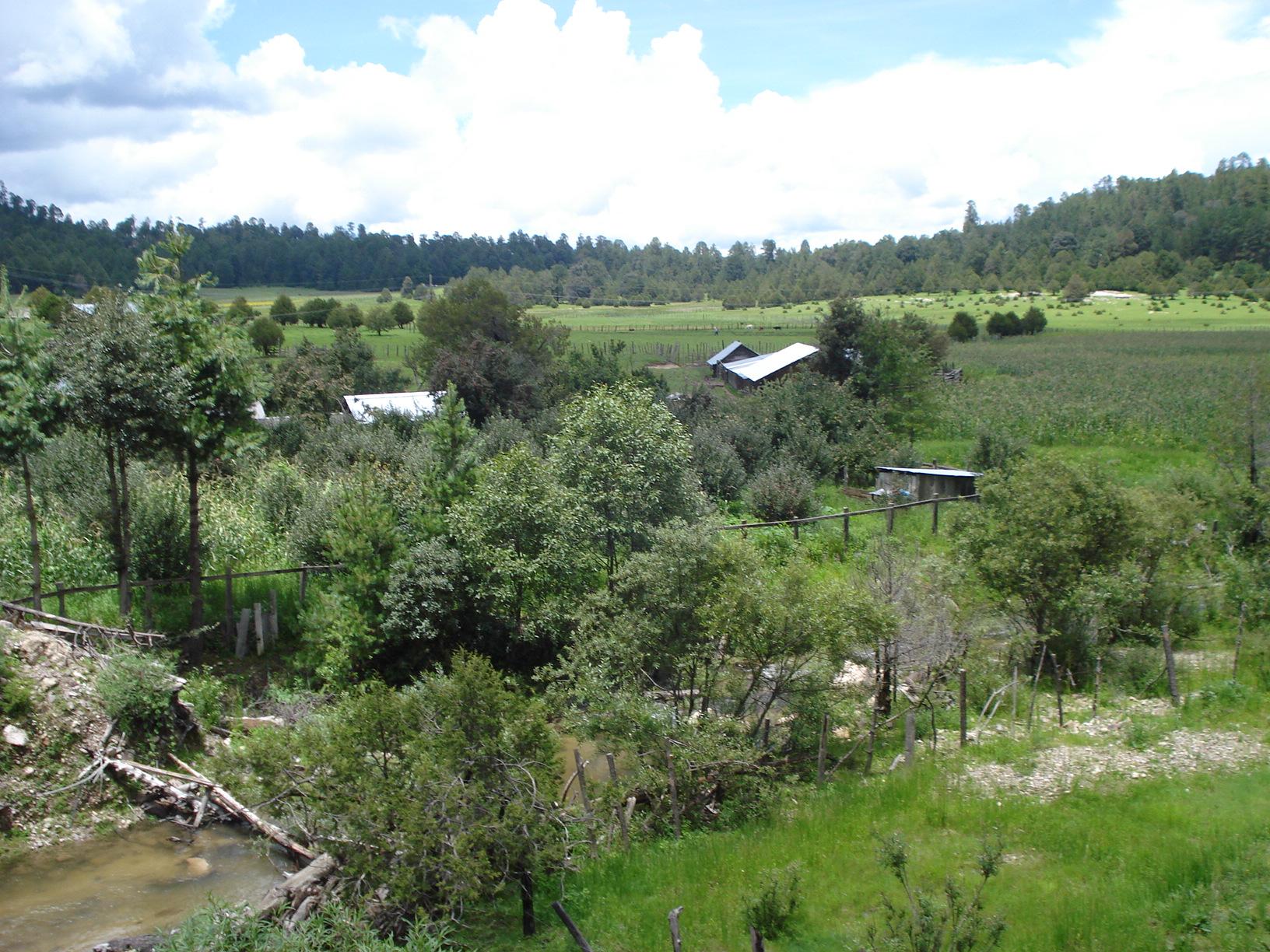Fotos de la sierra de tepehuanes durango 49